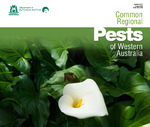 Common regional pests of Western Australia