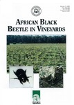 African black beetle in vineyards