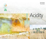 Subsurface acidity