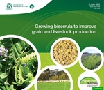 Growing biserrula to improve grain and livestock production by Angelo Loi, Natalie Hogg, Clinton Revell, and Diana Federenko