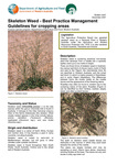 Skeleton weed - best practice management guidelines for cropping programs